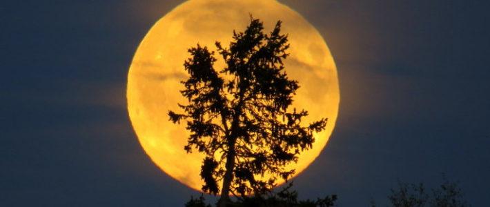 クリスタルボウル演奏♪蠍座の満月に寄せて
