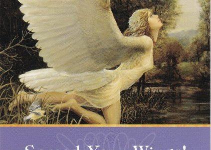 今こそチャンス~翼を拡げ翔び立つ時です!❤大天使アリエルからのスピリチュアルメッセージ