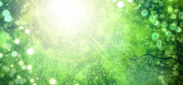 4/6(土)古民家でヨガ&クリスタルボウル瞑想❤光の降り注ぐ里・三調家のマクロビランチ付